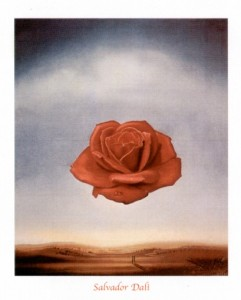 salvador-dali-rose-meditative